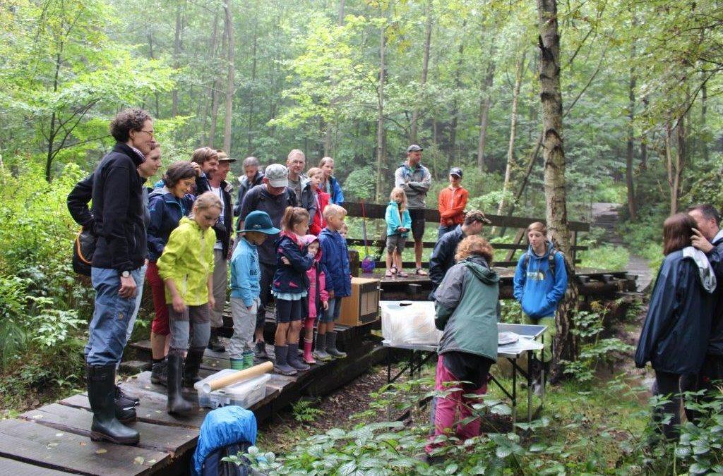 """Familien – Exkursion """"Lebensraum Fließgewässer"""" ins Bielatal am 26. August 2017"""